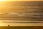 Sunset in Oregon