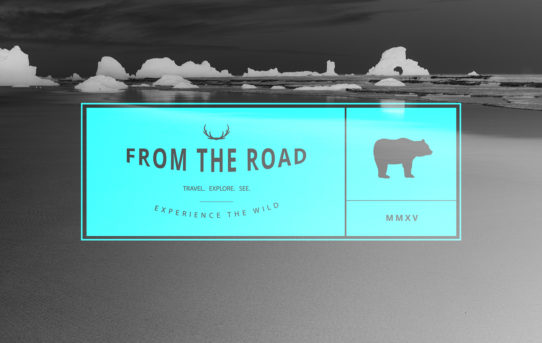 From the road header