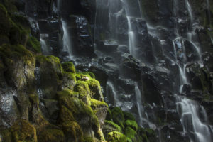Ramona Falls detail, Oregon