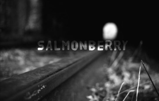 Salmonberry hiking trail (closed)