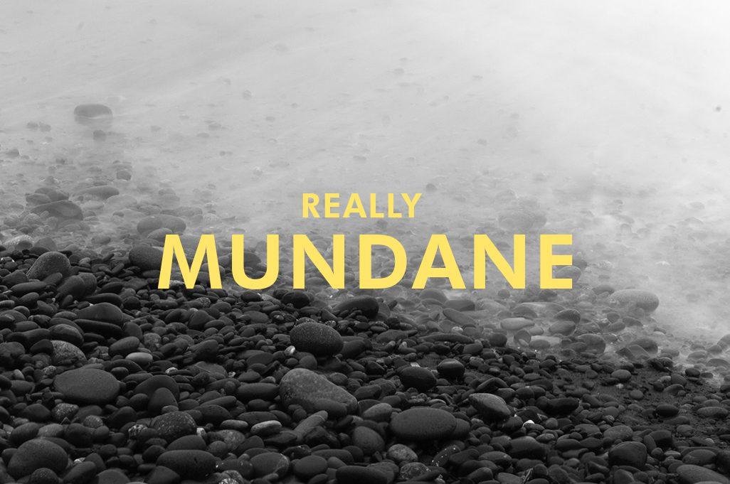 Really Mundane 2018 Calendar Cover