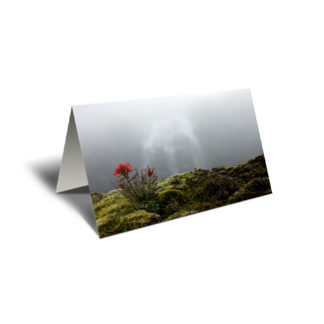 5x7 greeting card