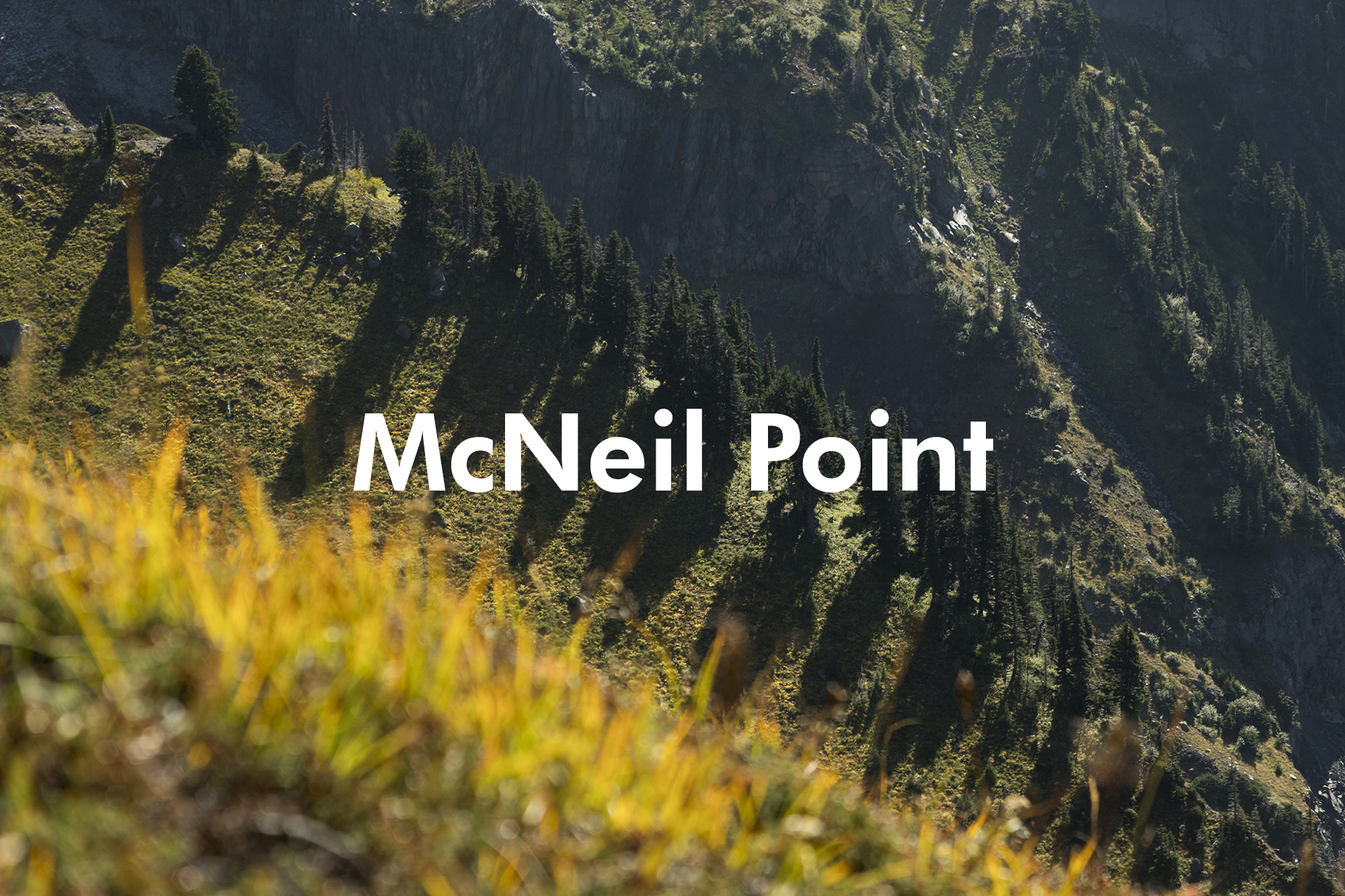 McNei Point - Mt. Hood, Oregon