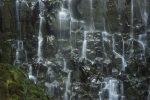 Ramona Falls detail 1, Oregon