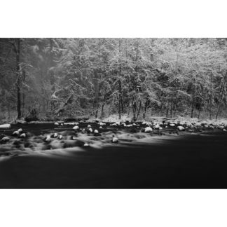 Snow Falling // Christopher Lisle