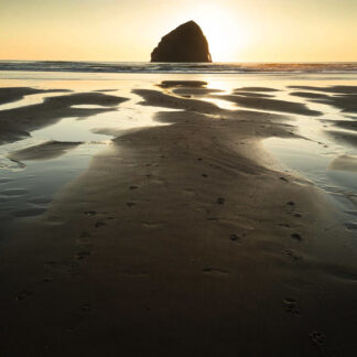 Oregon Coast - Christopher Lisle