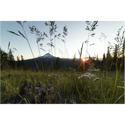 Setting Sun | Christopher Lisle