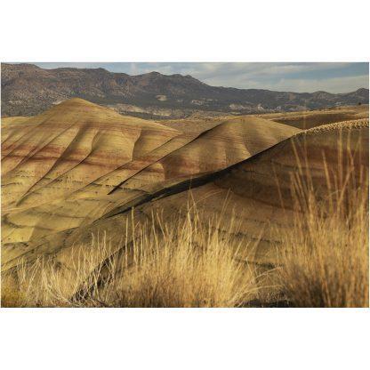 Painted Hills | Christopher Lisle