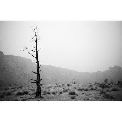 Smith Rock | Christopher Lisle