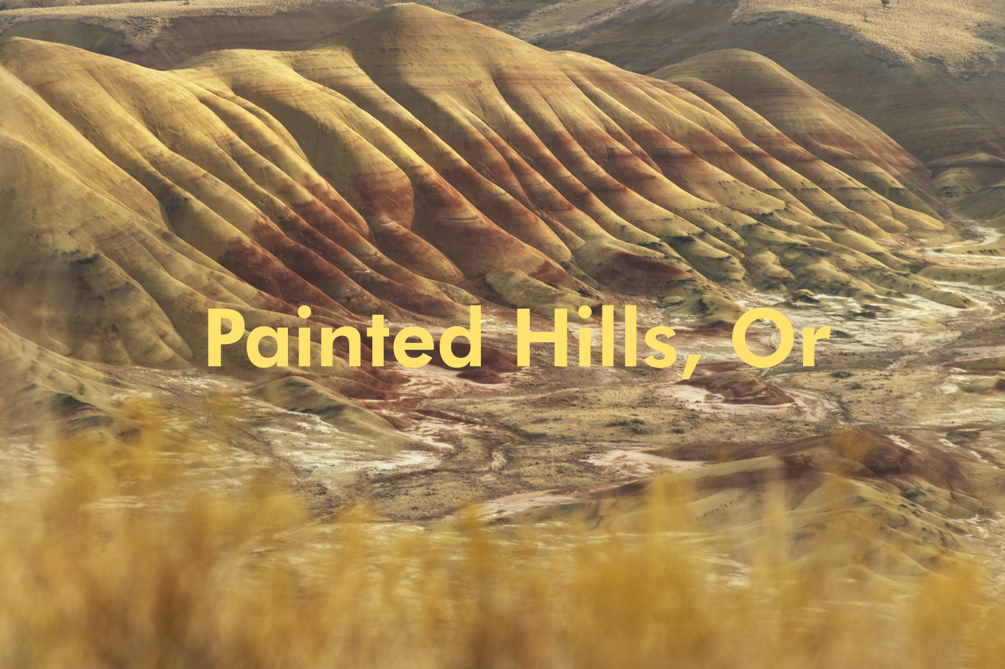 Christopher Lisle | Painted Hills, Oregon | Fall 2020