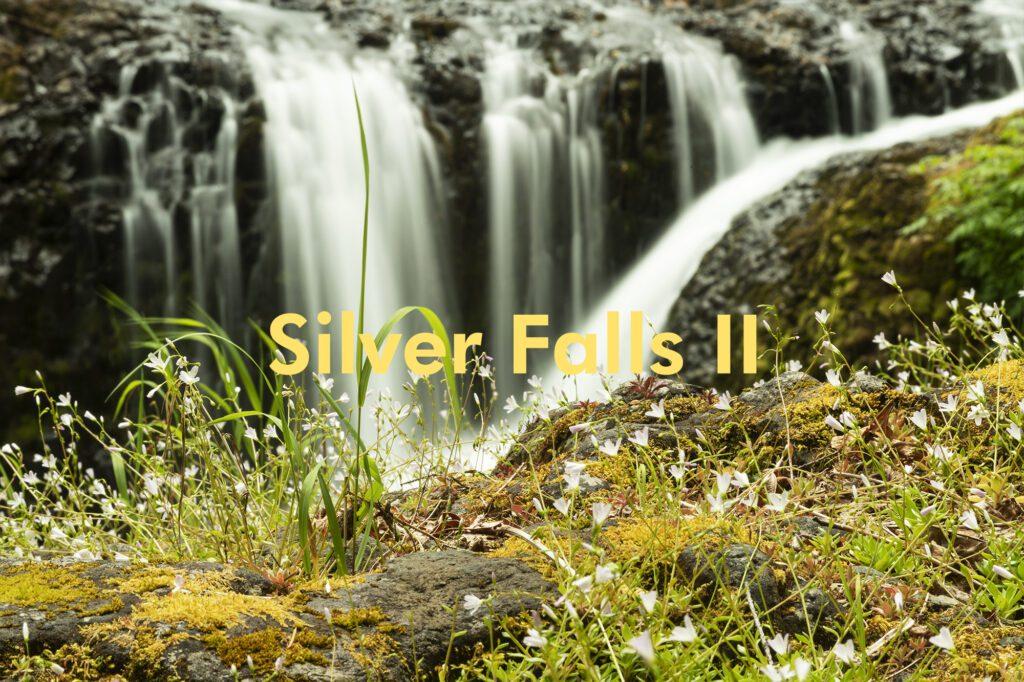 Silver Falls II – Christopher Lisle