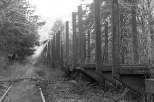 Salmonberry rail
