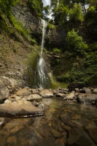 Silver Falls State Park, Oregon | Christopher Lisle 2021